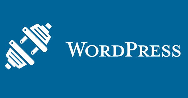 Plugin แนะนำสำหรับ WordPress